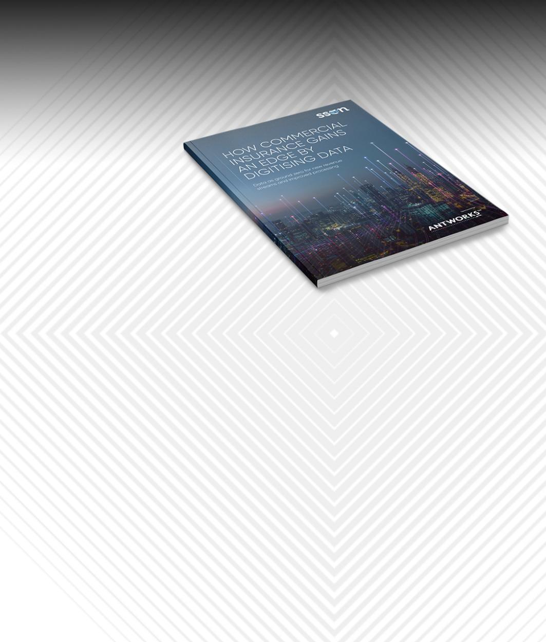 SSON Insurance Report